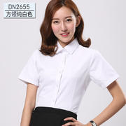 2017佐马仕新款女士方领 工装领纯白色女士短袖衬衫DN2655