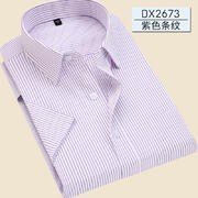 2017佐马仕男士新款紫色条纹短袖衬衫DX2673